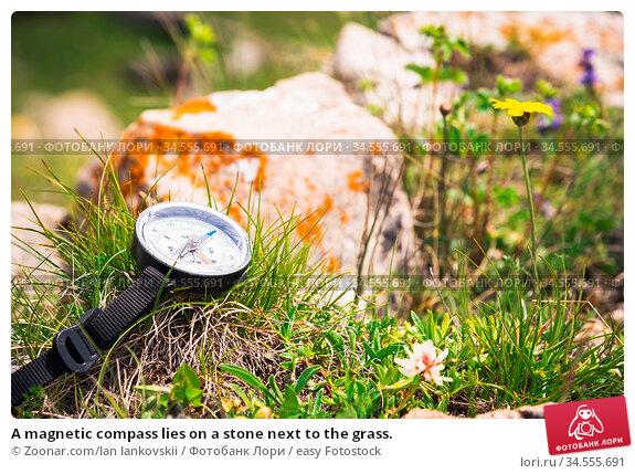 A magnetic compass lies on a stone next to the grass. Стоковое фото, фотограф Zoonar.com/Ian Iankovskii / easy Fotostock / Фотобанк Лори