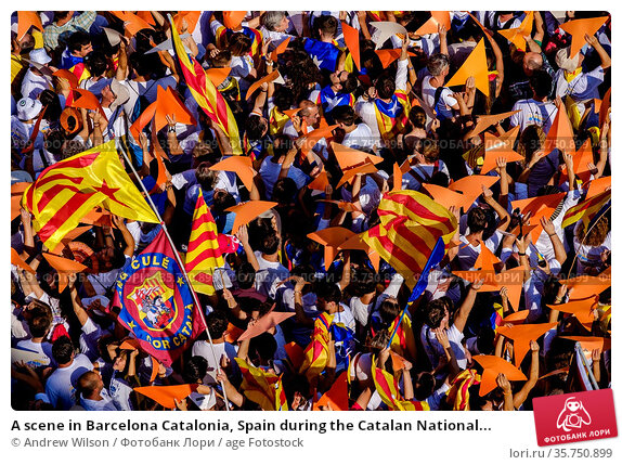 A scene in Barcelona Catalonia, Spain during the Catalan National... Стоковое фото, фотограф Andrew Wilson / age Fotostock / Фотобанк Лори