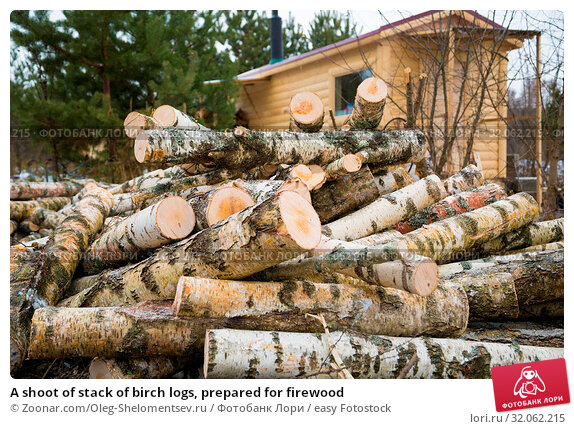 A shoot of stack of birch logs, prepared for firewood. Стоковое фото, фотограф Zoonar.com/Oleg-Shelomentsev.ru / easy Fotostock / Фотобанк Лори