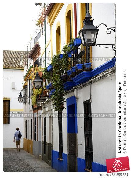 A street in Cordoba, Andalusia,Spain. Стоковое фото, фотограф Frederic Soreau / age Fotostock / Фотобанк Лори