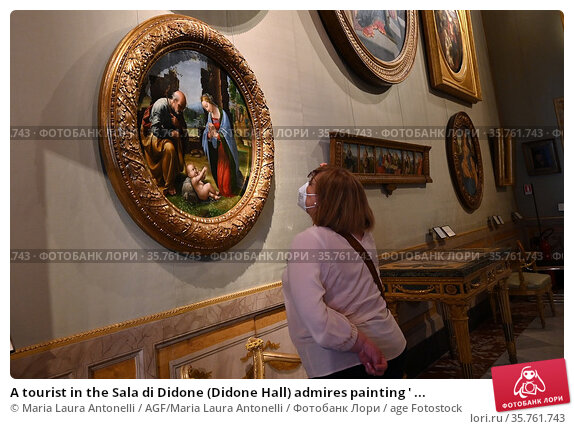 A tourist in the Sala di Didone (Didone Hall) admires painting ' ... Редакционное фото, фотограф Maria Laura Antonelli / AGF/Maria Laura Antonelli / age Fotostock / Фотобанк Лори