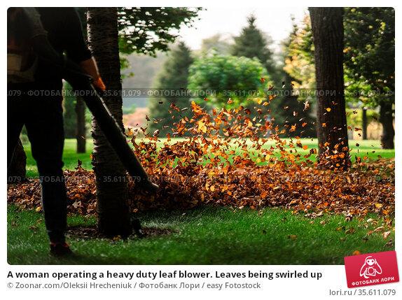A woman operating a heavy duty leaf blower. Leaves being swirled up. Стоковое фото, фотограф Zoonar.com/Oleksii Hrecheniuk / easy Fotostock / Фотобанк Лори