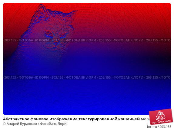 Абстрактное фоновое изображение текстурированной кошачьей морды, фото № 203155, снято 24 марта 2017 г. (c) Андрей Бурдюков / Фотобанк Лори