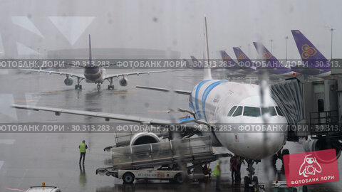 Купить «Airbus 320 on service in Suvarnabhumi airport», видеоролик № 30313283, снято 11 ноября 2017 г. (c) Игорь Жоров / Фотобанк Лори