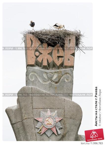 Купить «Аисты на стеле г.Ржева», фото № 1996783, снято 3 июля 2010 г. (c) nikshor / Фотобанк Лори