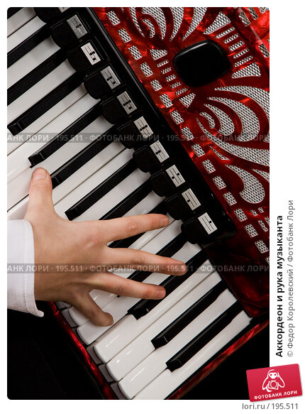 Аккордеон и рука музыканта, фото № 195511, снято 16 января 2008 г. (c) Федор Королевский / Фотобанк Лори