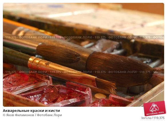 Акварельные краски и кисти, фото № 119375, снято 10 ноября 2007 г. (c) Яков Филимонов / Фотобанк Лори