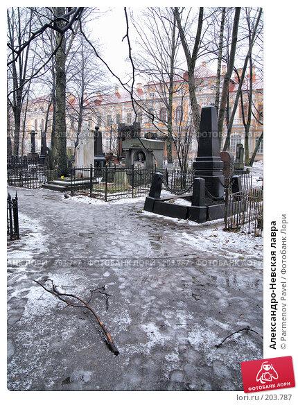 Александро-Невская лавра, фото № 203787, снято 8 февраля 2008 г. (c) Parmenov Pavel / Фотобанк Лори