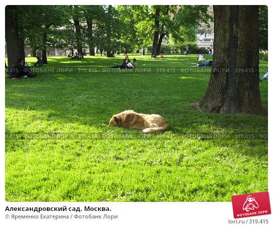 Александровский сад. Москва., фото № 319415, снято 28 мая 2008 г. (c) Яременко Екатерина / Фотобанк Лори