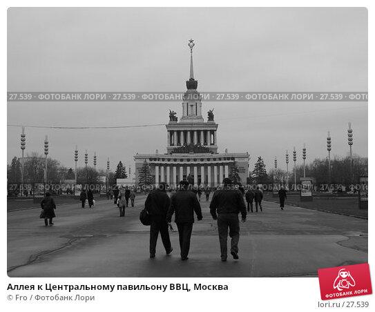 Аллея к Центральному павильону ВВЦ, Москва, фото № 27539, снято 13 ноября 2004 г. (c) Fro / Фотобанк Лори