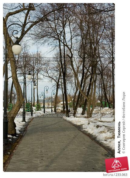 Купить «Аллея,  Тюмень», фото № 233063, снято 25 марта 2008 г. (c) Снигирев Сергей / Фотобанк Лори