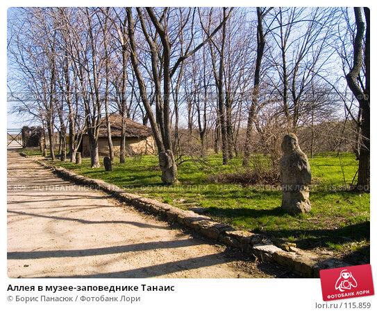 Аллея в музее-заповеднике Танаис, фото № 115859, снято 22 февраля 2007 г. (c) Борис Панасюк / Фотобанк Лори