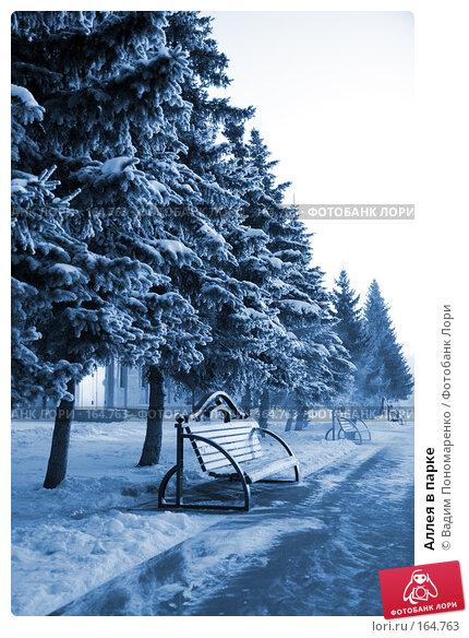 Купить «Аллея в парке», фото № 164763, снято 1 декабря 2007 г. (c) Вадим Пономаренко / Фотобанк Лори