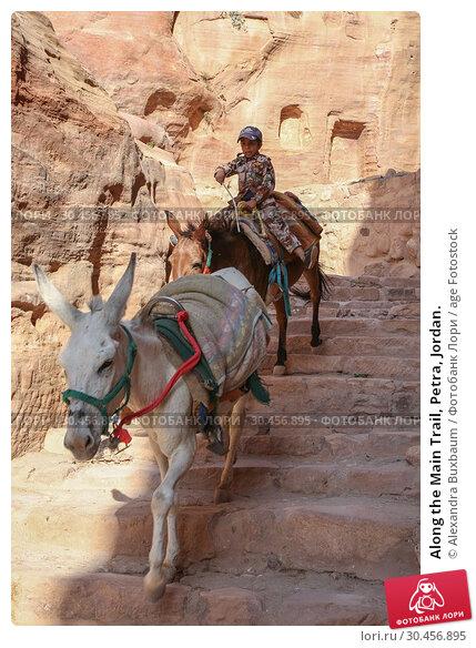 Along the Main Trail, Petra, Jordan. (2018 год). Редакционное фото, фотограф Alexandra Buxbaum / age Fotostock / Фотобанк Лори