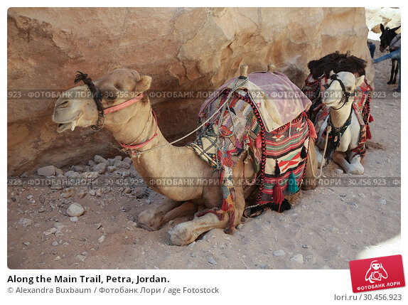 Along the Main Trail, Petra, Jordan. Стоковое фото, фотограф Alexandra Buxbaum / age Fotostock / Фотобанк Лори