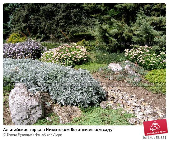 Альпийская горка в Никитском Ботаническом саду, фото № 58851, снято 6 сентября 2006 г. (c) Елена Руденко / Фотобанк Лори