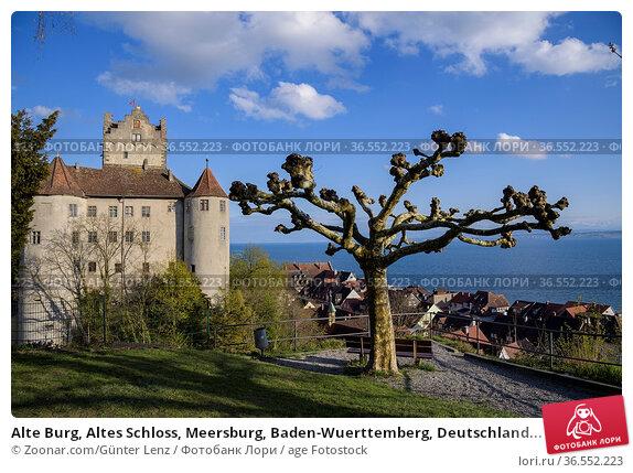Alte Burg, Altes Schloss, Meersburg, Baden-Wuerttemberg, Deutschland... Стоковое фото, фотограф Zoonar.com/Günter Lenz / age Fotostock / Фотобанк Лори
