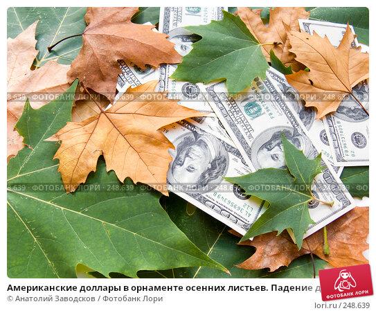 Американские доллары в орнаменте осенних листьев. Падение доллара, фото № 248639, снято 25 сентября 2007 г. (c) Анатолий Заводсков / Фотобанк Лори