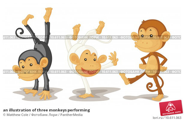 an illustration of three monkeys performing. Стоковая иллюстрация, иллюстратор Matthew Cole / PantherMedia / Фотобанк Лори