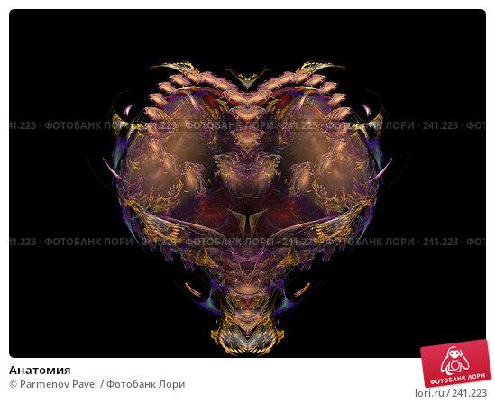 Анатомия, иллюстрация № 241223 (c) Parmenov Pavel / Фотобанк Лори