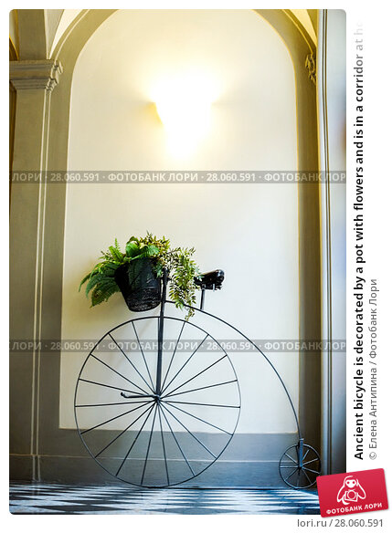 Ancient bicycle is decorated by a pot with flowers and is in a corridor at home. Стоковое фото, фотограф Елена Антипина / Фотобанк Лори