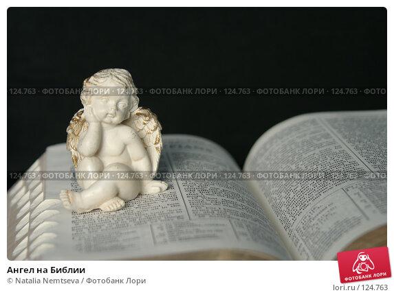Ангел на Библии, эксклюзивное фото № 124763, снято 9 ноября 2007 г. (c) Natalia Nemtseva / Фотобанк Лори