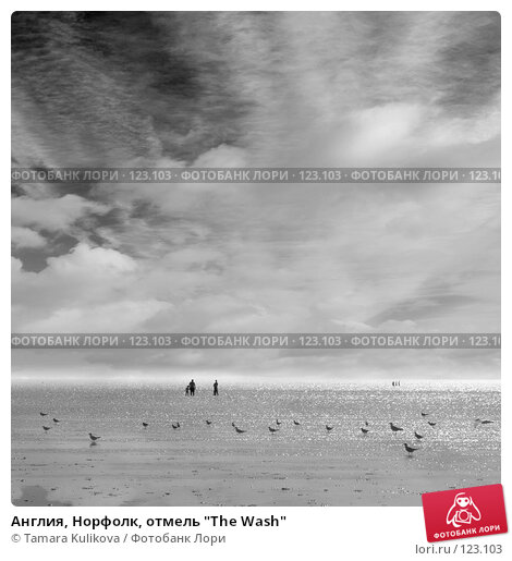 "Купить «Англия, Норфолк, отмель ""The Wash""», фото № 123103, снято 5 августа 2007 г. (c) Tamara Kulikova / Фотобанк Лори"