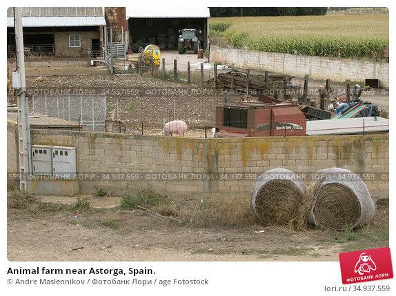Animal farm near Astorga, Spain. Стоковое фото, фотограф Andre Maslennikov / age Fotostock / Фотобанк Лори
