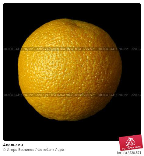 Апельсин, фото № 220571, снято 8 марта 2008 г. (c) Игорь Веснинов / Фотобанк Лори