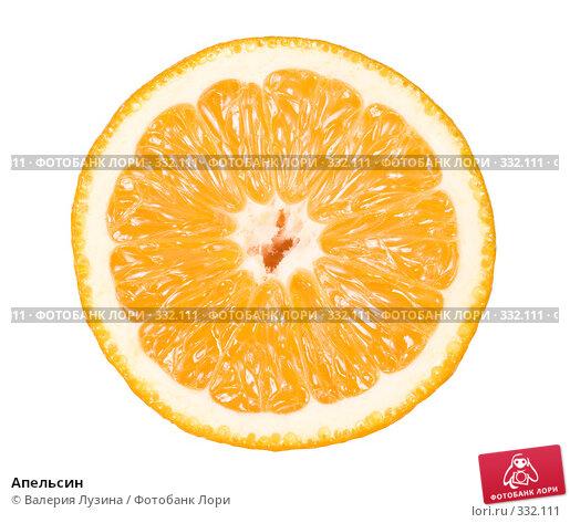 Купить «Апельсин», фото № 332111, снято 18 июня 2008 г. (c) Валерия Потапова / Фотобанк Лори