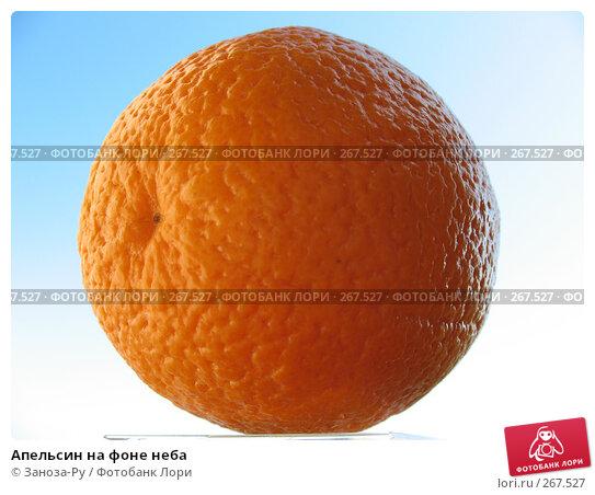Купить «Апельсин на фоне неба», фото № 267527, снято 26 апреля 2008 г. (c) Заноза-Ру / Фотобанк Лори