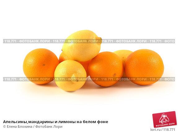 Апельсины,мандарины и лимоны на белом фоне, фото № 118771, снято 7 ноября 2007 г. (c) Елена Блохина / Фотобанк Лори