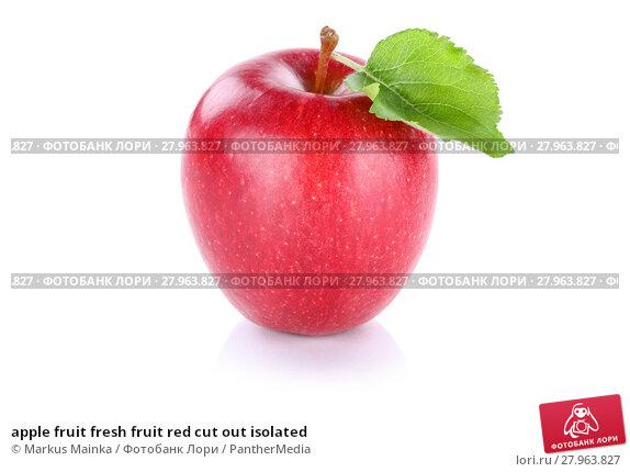 Купить «apple fruit fresh fruit red cut out isolated», фото № 27963827, снято 21 августа 2018 г. (c) PantherMedia / Фотобанк Лори