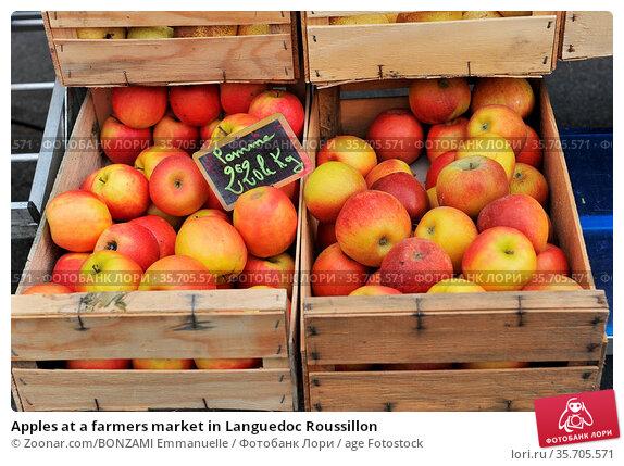 Apples at a farmers market in Languedoc Roussillon. Стоковое фото, фотограф Zoonar.com/BONZAMI Emmanuelle / age Fotostock / Фотобанк Лори