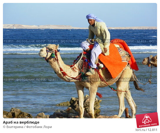Купить «Араб на верблюде», фото № 12811, снято 6 ноября 2006 г. (c) Екатерина / Фотобанк Лори