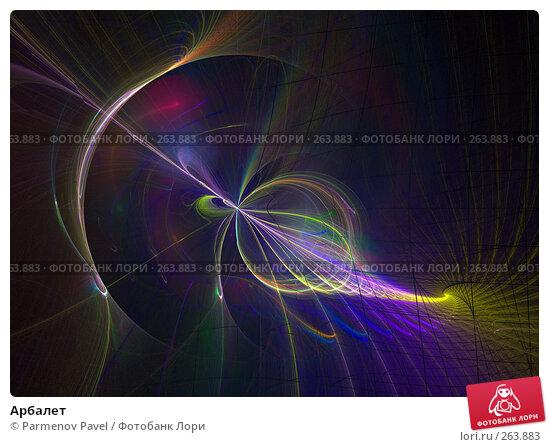 Арбалет, иллюстрация № 263883 (c) Parmenov Pavel / Фотобанк Лори