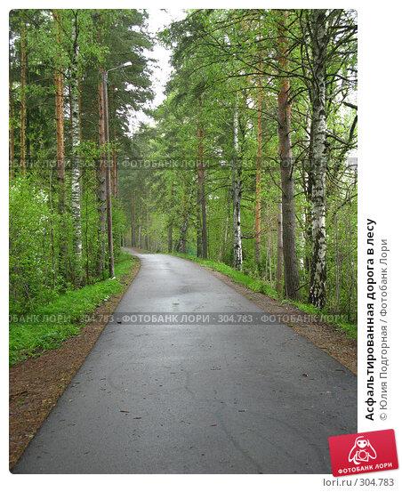 Купить «Асфальтированная дорога в лесу», фото № 304783, снято 18 мая 2008 г. (c) Юлия Селезнева / Фотобанк Лори