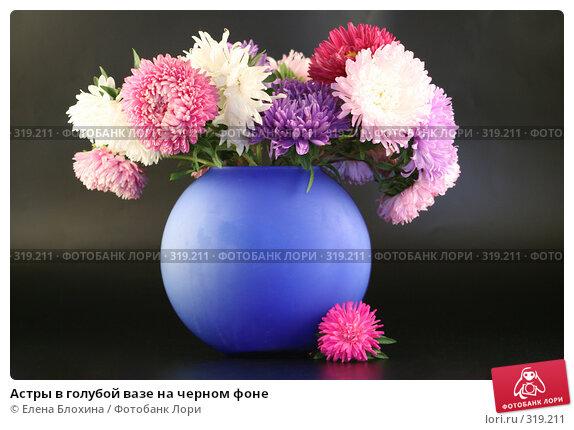 Купить «Астры в голубой вазе на черном фоне», фото № 319211, снято 12 сентября 2007 г. (c) Елена Блохина / Фотобанк Лори