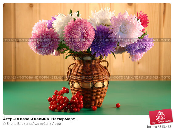 Астры в вазе и калина. Натюрморт., фото № 313463, снято 4 сентября 2007 г. (c) Елена Блохина / Фотобанк Лори