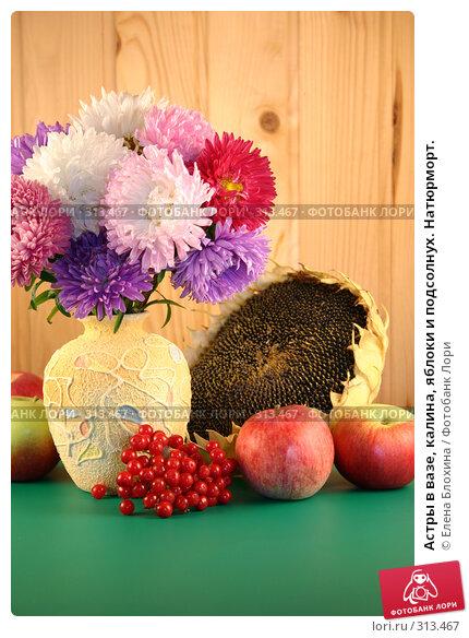 Астры в вазе, калина, яблоки и подсолнух. Натюрморт., фото № 313467, снято 4 сентября 2007 г. (c) Елена Блохина / Фотобанк Лори