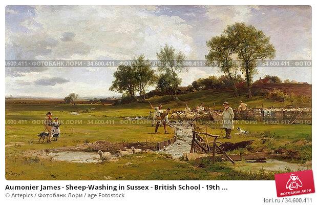 Aumonier James - Sheep-Washing in Sussex - British School - 19th ... Стоковое фото, фотограф Artepics / age Fotostock / Фотобанк Лори