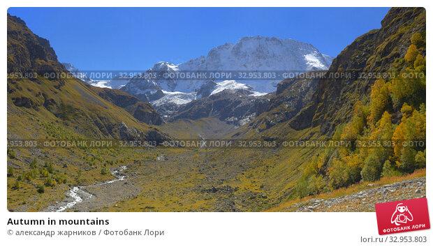 Autumn in mountains. Стоковое фото, фотограф александр жарников / Фотобанк Лори