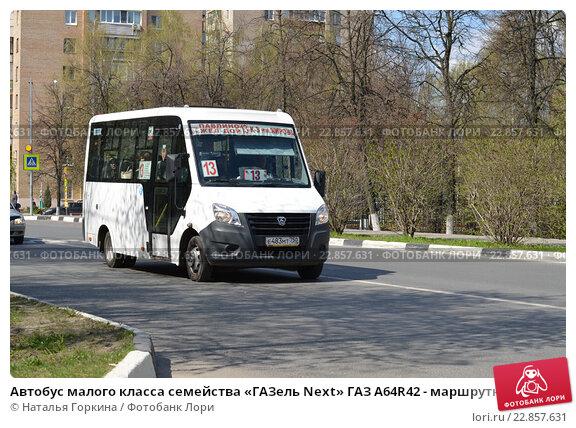человек, видя расписание 307 автобуса в сестрорецке славянские
