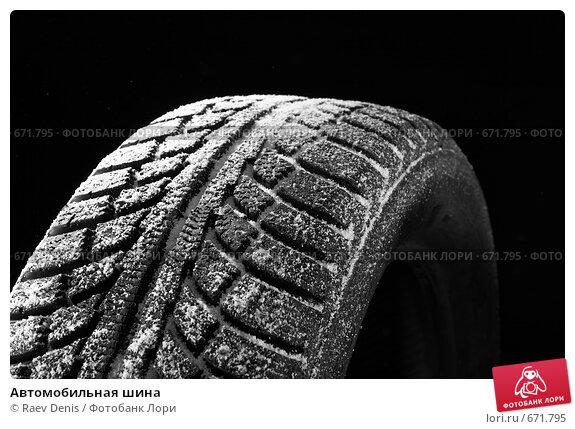 Купить «Автомобильная шина», фото № 671795, снято 17 ноября 2008 г. (c) Raev Denis / Фотобанк Лори
