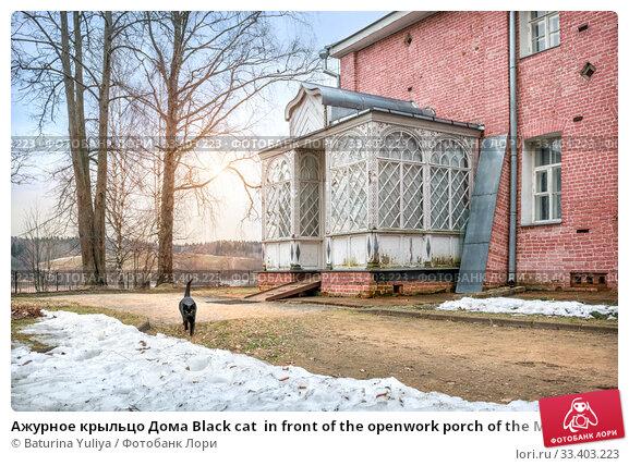 Купить «Ажурное крыльцо Дома Black cat  in front of the openwork porch of the Main House», фото № 33403223, снято 9 марта 2020 г. (c) Baturina Yuliya / Фотобанк Лори