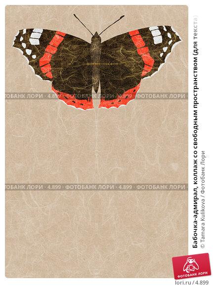 Бабочка-адмирал, коллаж со свободным пространством (для текста), иллюстрация № 4899 (c) Tamara Kulikova / Фотобанк Лори