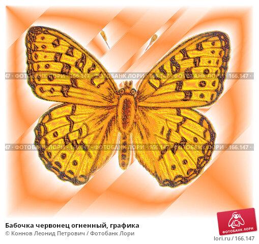 Бабочка червонец огненный, графика, иллюстрация № 166147 (c) Коннов Леонид Петрович / Фотобанк Лори