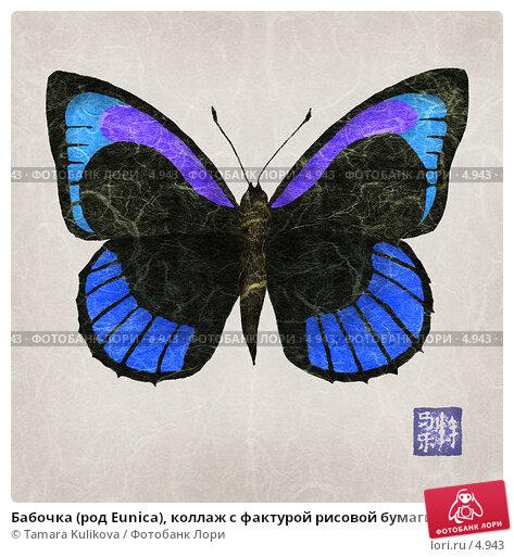 Бабочка (род Eunica), коллаж с фактурой рисовой бумаги, иллюстрация № 4943 (c) Tamara Kulikova / Фотобанк Лори