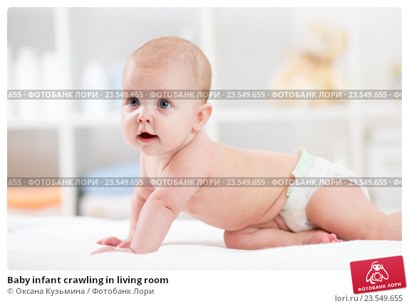 Купить «Baby infant crawling in living room», фото № 23549655, снято 7 октября 2015 г. (c) Оксана Кузьмина / Фотобанк Лори