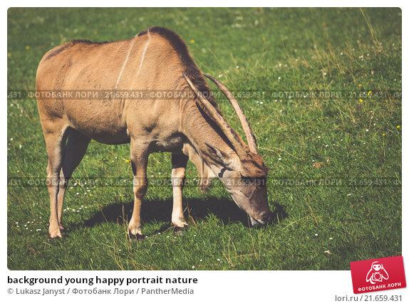 Купить «background young happy portrait nature», фото № 21659431, снято 19 апреля 2019 г. (c) PantherMedia / Фотобанк Лори